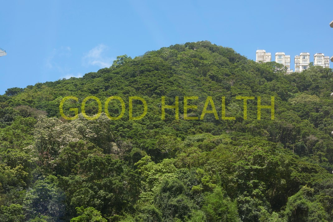 Good Health, 2021.  Digital Photo