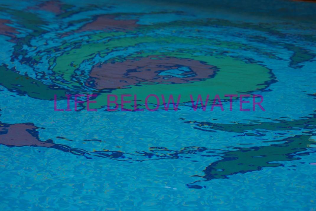Life Below Water, 2021.  Digital Photo